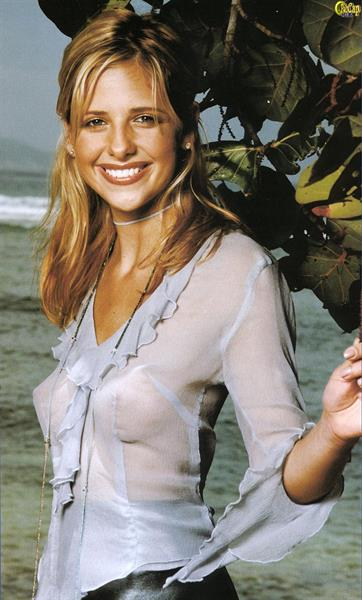 Sarah Michelle Gellar - breasts