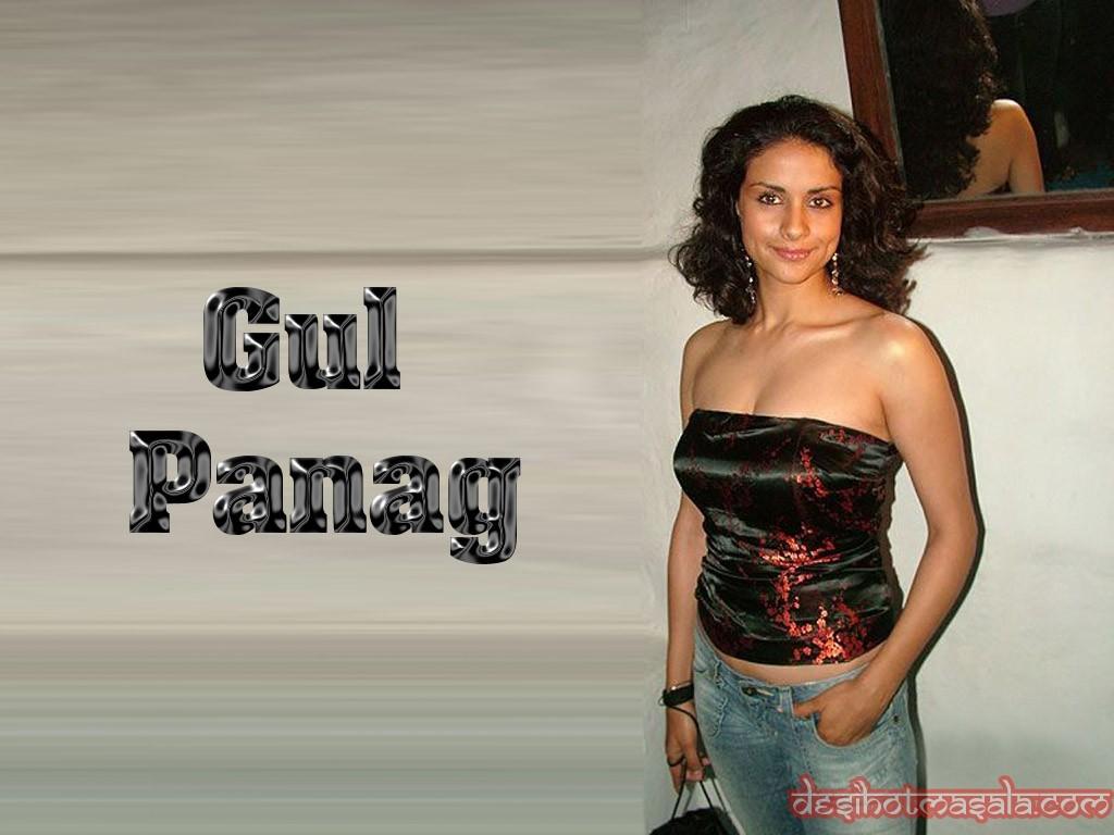 Gul panag sexy wallpaper