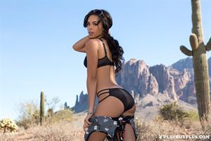 Playboy Cybergirl Briana Ashley Nude in the desert
