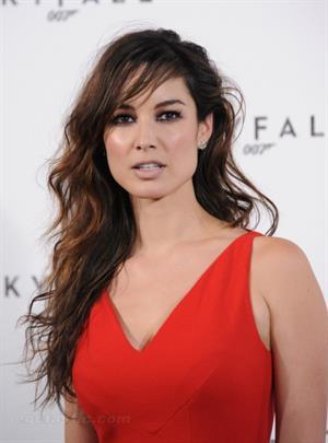 Berenice Marlohe Photocall for  Skyfall  in London (03.11.2011)