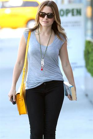 Sophia Bush and Topher Grace Have Lunch Together on July 27, 2012, Los Angeles, California