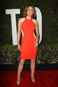 Stana Katic  Mandela: Long Walk To Freedom  Los Angeles Premiere - Hollywood, Nov. 11, 2013