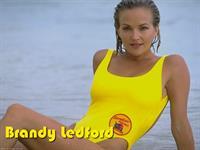 Brandy Ledford in a bikini