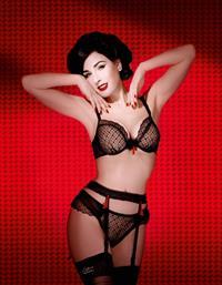 Dita Von Teese in lingerie