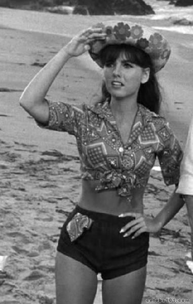 Dawn Wells Pictures 9 Images-6466