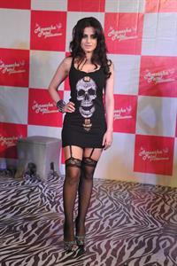 Ameesha Patel in lingerie
